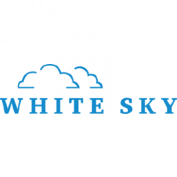 White Sky and One of One Governance Scholarship Continues in 2021-2022